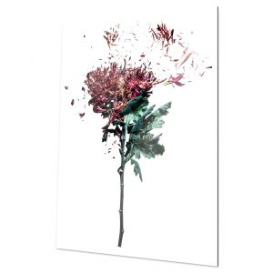 Flower bomb Fine Art Print for home and workspace decorations