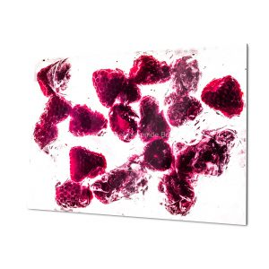Happy Berry Fine Art Print for home and workspace decorations